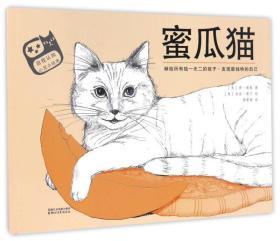 自我认知心灵小绘本:蜜瓜猫