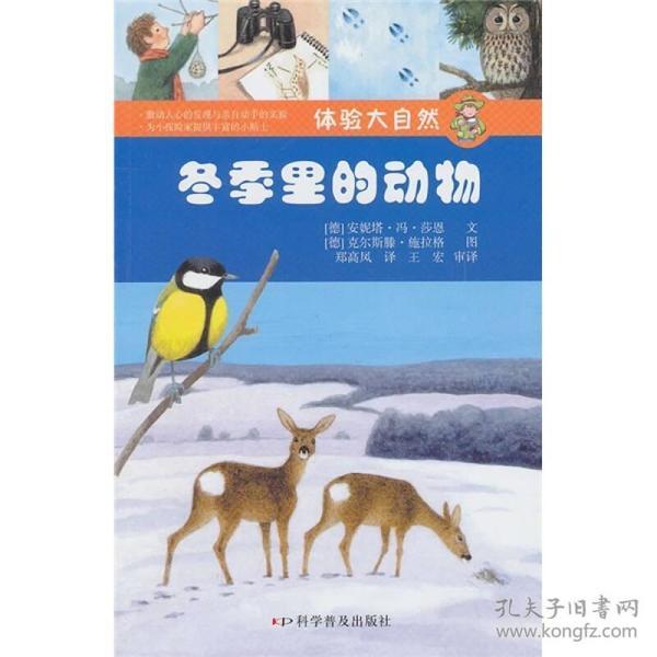 体验大自然:冬季里的动物