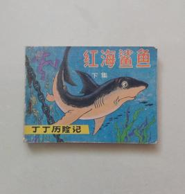 红海鲨鱼  下集