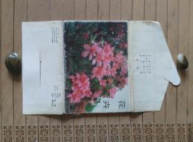 新疆花卉  明信片【8张】