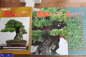 近代盆栽 増刊号 黑松   全3册   绝版 包邮  品好