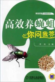 高效养蝇蛆你问我答