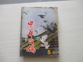 中华信鸽1986年3月第3期【887】