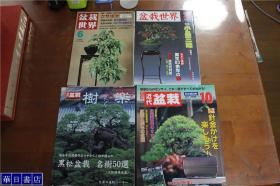 日本盆栽  盆栽世界2册  近代盆栽1册   黑松50选附录1册    共4册  合售!