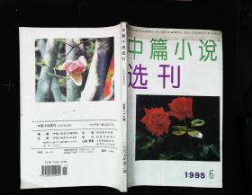 中篇小说选刊