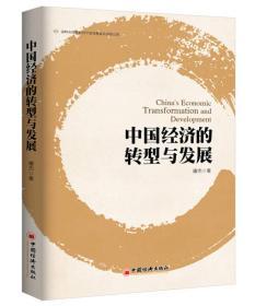 现货-中国经济的转型与发展
