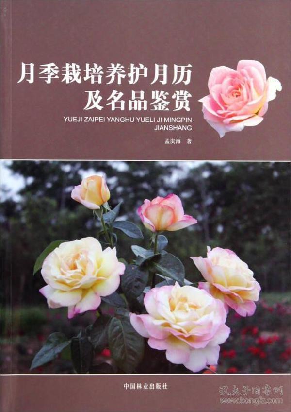 月季栽培养护月历及名品鉴赏