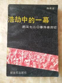 浩劫中的一幕,武汉七二0事件亲历记