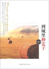 现货-到城市种麦子