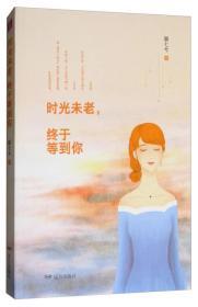 紫水晶情感小说系列:时光未老,终于等到你