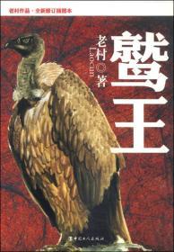 鹫王(老村作品·全新修订插图本)