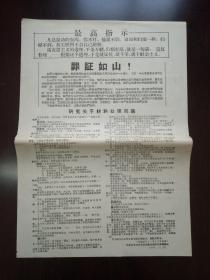 【文革精品大字报布告通告】 罪证如山     大8开  见图