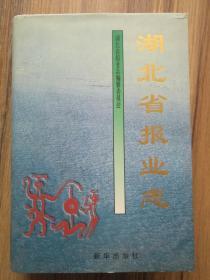 湖北省报业志