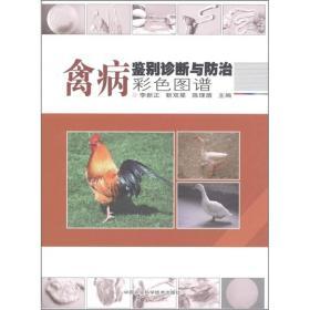 禽病鉴别诊断与防治彩色图谱