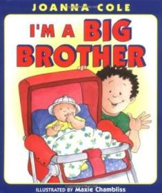 Im A Big Brother