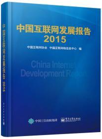 中国互联网发展报告2015