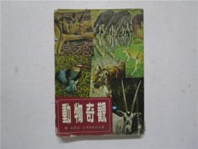 1977年版《动物奇观》