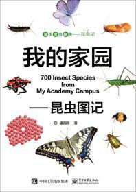我的家园 昆虫图记
