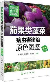 现代蔬菜病虫害防治丛书--茄果类蔬菜病虫害诊治原色图鉴(第二版)