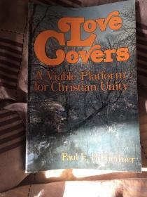 英文原版 Love Covers A Viable