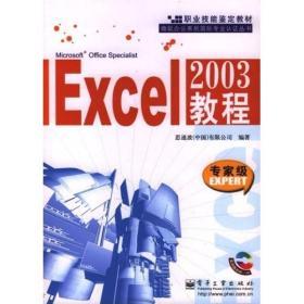Excel2003教程(专家级)