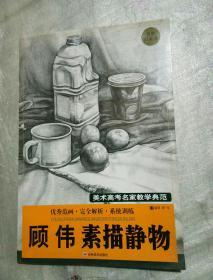 美术高考名家教学典范:顾伟素描静物