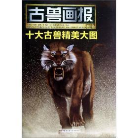恐龙画报【全五册】