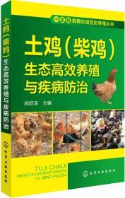(养殖)小家畜规模化规范化养殖丛书--土鸡(柴鸡)生态高效养殖与疾病防治