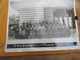 36 《中国医学百科全书》工作会议全体代表留影 1984.12.7于厦门 12寸大背面手稿 954      0026