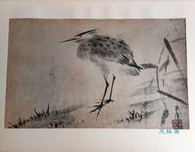 四开版画 五位鹭图 东京国立博物馆藏 日本国宝 水墨花鸟名画