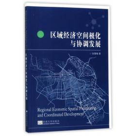 区域经济空间极化与协调发展
