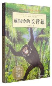 戴银铃的长臂猿