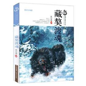 盛世中国原创儿童文学大系:藏獒渡魂