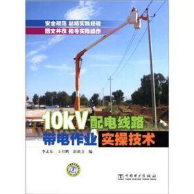 10kV配电线路带电作业实操技术