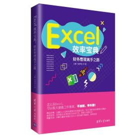 Excel效率宝典:财务管理高手之路