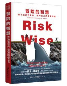 冒险的智慧 在不确定的未来,保持自己的竞争优势