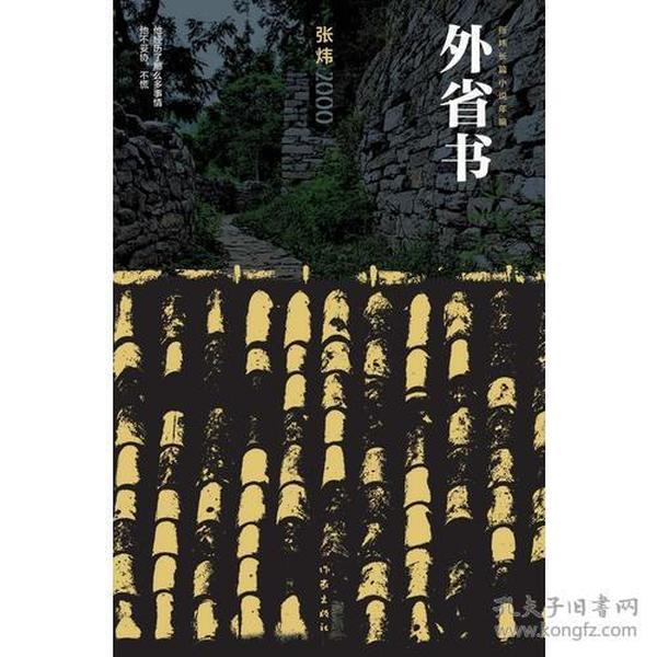 外省书(张炜长篇小说年编)