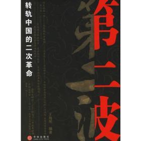 第二波:转轨中国的二次革命