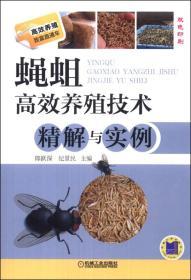 蝇蛆高效养殖技术精解与实例