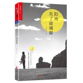保证正版 阳光失了玻璃窗 文艺的人工智能诗人-小冰 9787559602961 北京联合出版有限公司