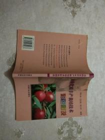 油桃优质丰产栽培技术彩色图说