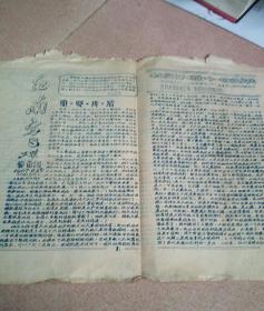 文革小报  红南方