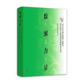 数聚力量:2016年中国大数据产业峰会暨中国电子商务创新发展峰会全记录