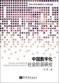 中国数字化社会阶层研究
