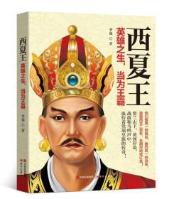 西夏王:英雄之生,当为王霸