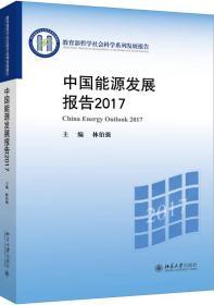 中国能源发展报告2017