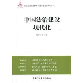 中国法治建设现代化