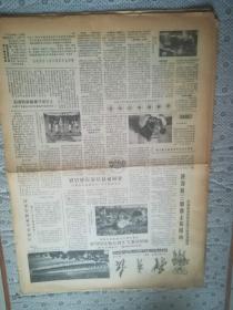 体育报 第2704期  1984年9月24日