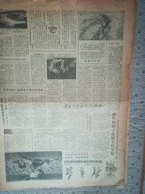 体育报 第2737期  1984年10月27日