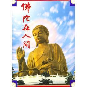 佛陀在人间(精装)